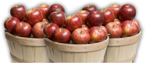 apples-basket